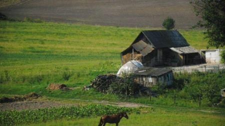 На Житомирщині сільські жінки живуть на 2,5 роки менше, ніж міські