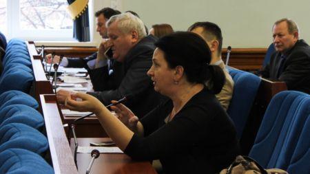 Стало відомо, чому депутати міськради не обговорювали на сесії проект розвитку теплопостачання Житомира