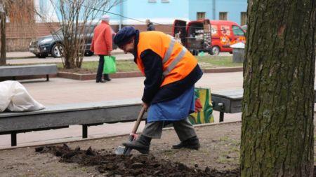 Зеленбуд почав засівати міські газони травою (ФОТО)