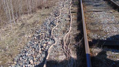 21-річний селянин викопав магістральний кабель, призначений для оперативного зв'язку з працівниками Укрзалізниці
