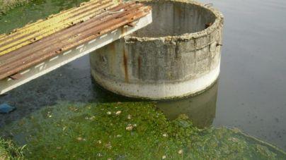 Кількість гельмінтів у воді річки Гуйва перевищує всі норми, – житомирська активістка