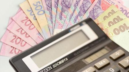 На Житомирщині «спрощенці» поповнили бюджет більше, ніж на 80 млн грн