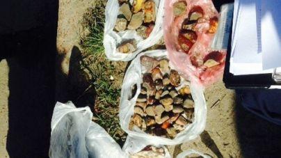 Кияни скуповували на Житомирщині відбірний бурштин для продажу на «чорному ринку»