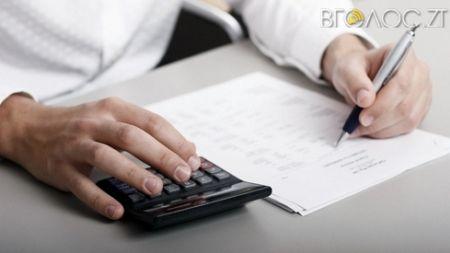 На Житомирщині 8 мільйонерів задекларували свої доходи