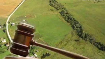 Обласна рада хоче віддати понад 100 гектарів одіозному олігарху Фірташу