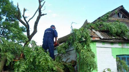 На будинок багатодітної сім'ї впало дерево