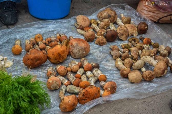 В Андрушівському районі отруїлася грибами 30-річна жінка