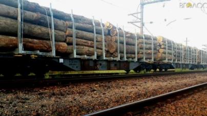 Із середини травня житомирську деревину не пропускають митники на Закарпатті