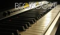 Житомирська школярка посіла друге місце на міжнародному конкурсі піаністів