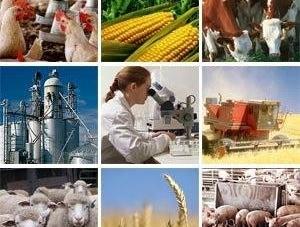 В області створили «Поліський аграрний ресурсний центр»