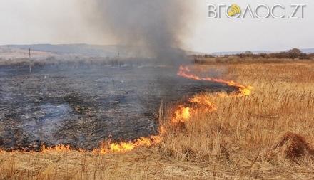 Упродовж трьох діб вигоріло майже 5 гектарів сухої трави та стерні