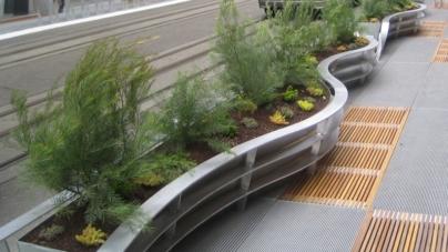 На наступному виконкомі «Зеленбуд» представить проект озеленення Житомира