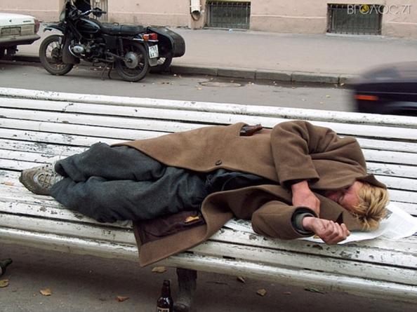 У міській раді шукають, хто опікуватиметься бездомними
