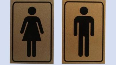Громадські туалети для Житомира закуповувати поки що не будуть