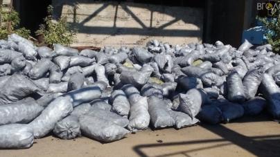 Під Малином накрили незаконне виробництво деревного вугілля та вилучили  22,3 тонни продукції