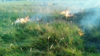 Упродовж доби в області ліквідували 19 загорянь сухостоїв