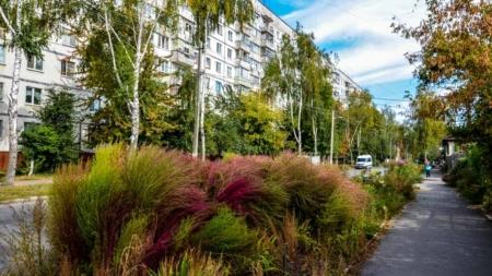 Фотоекскурсія осінньою вулицею Гоголівською: чим живуть її мешканці