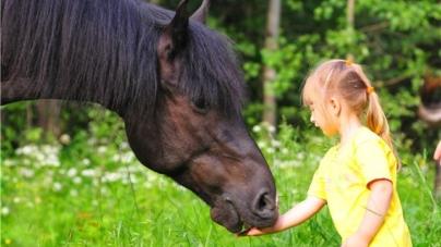 На «Святі коня» особливі діти виступатимуть верхи на конях