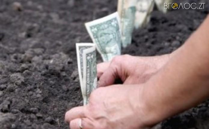 Майже 150 гектарів земельних паїв незаконно надали в оренду