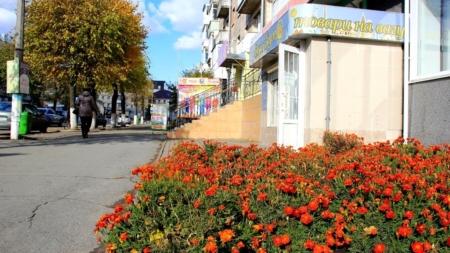 Фотоекскурсія осіннім Новоградом: вулиця Соборності