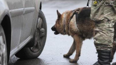 Житомирський поліцейський разом з Індією знайшли боєприпаси на Донеччині