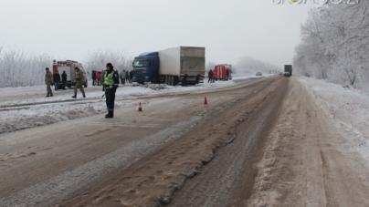Житомирські поліцейські розслідують, хто винен у масштабній ДТП на трасі Житомир – Бердичів