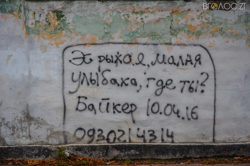 vulytsya-dombrovskogo-57-yz-85