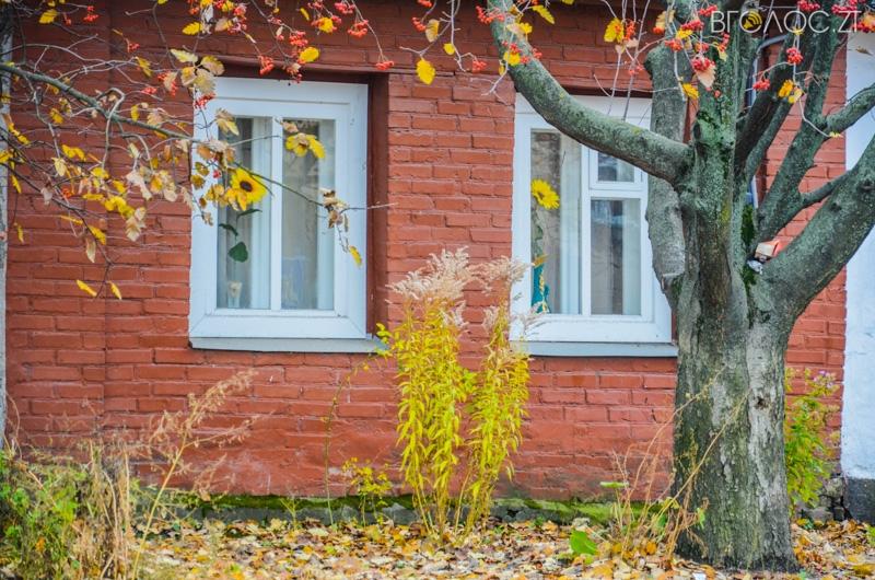 vulytsya-dombrovskogo-74-yz-85