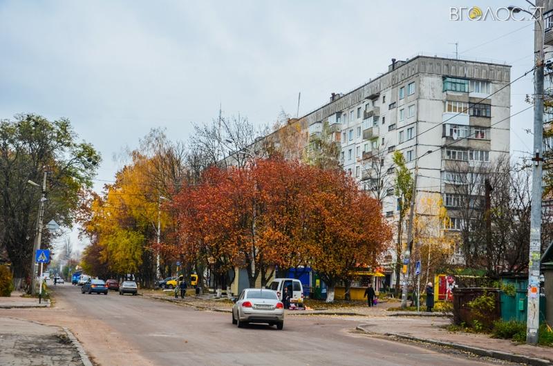 vulytsya-dombrovskogo-80-yz-85