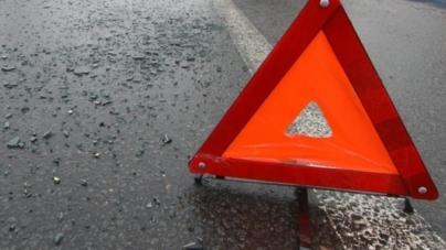 У Житомирському районі загинув пішохід, який біг по трасі