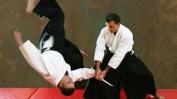 Для житомирян проведуть майстер-класи чемпіони та майстри бойових мистецтв
