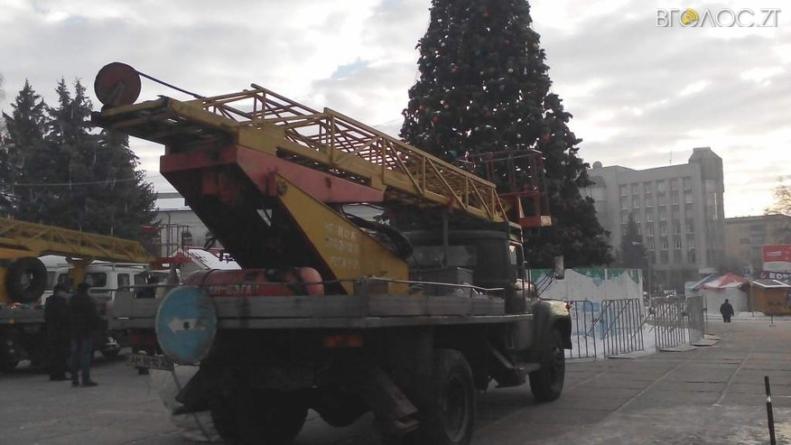 У Житомирі розбирають новорічну ялинку