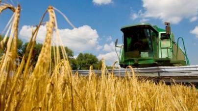 10,5 тисяч жителів області працювали торік у сільському господарстві