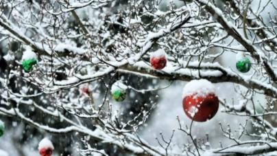 Стало відомо, де в області очікують сніг