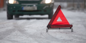 У Житомирському районі міжнародний рейсовий автобус збив насмерть жінку