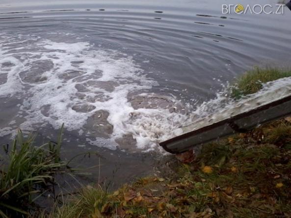 У Ружинському районі сільська рада незаконно забрала до комунальної власності ставки та греблі