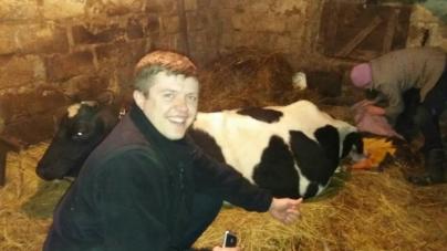 Патрульні поліцейські допомогли отелитися корові