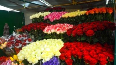 По проспекту Миру в Житомирі діятиме тимчасовий майданчик для торгівлі живими квітами