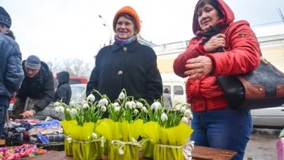 Житомирський міськвиконком хоче дозволити продавати саджанці біля павільйону з квітами