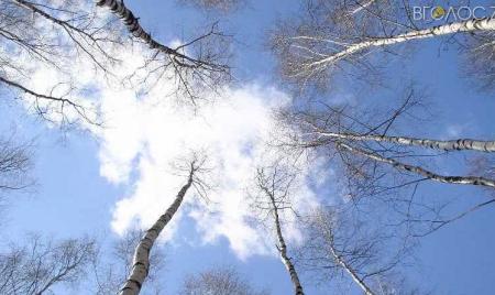 Якою буде погода на Житомирщині 24 вересня