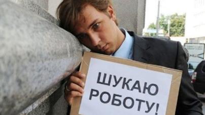 На Житомирщині 8 осіб претендують на одне робоче місце