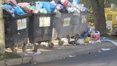 У мерії можуть розірвати угоди з перевізниками, які вивозять сміття у приватному секторі