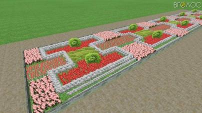 20 клумб у Житомирі збираються засадити багаторічними квітами