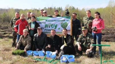 Житомирські журналісти разом з лісівниками створили гектар нового лісу (ФОТО)