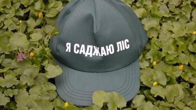 Лісівники зафіксували рекордну кількість осіб, які садили цієї весни ліс на Житомирщині