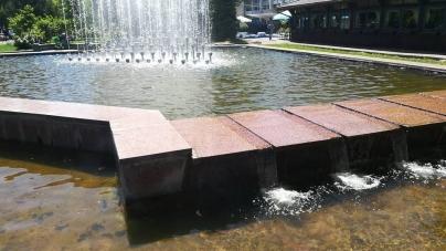 У фонтані біля кінотеатру «Жовтень» завелася риба (ФОТОФАКТ)