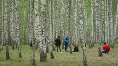 Студенти агроуніверситету стали кращими у Всеукраїнській олімпіаді «Лісове господарство»