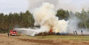 Як лісівники та вогнеборці разом тренувалися гасити пожежу (ФОТО)