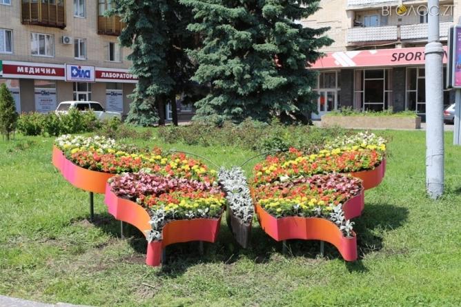 """У Житомирі металеву конструкцію """"Метелик"""" засадили квітами"""