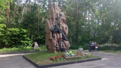 У Житомирі відзначили День скорботи та вшанування пам'яті жертв війни (ФОТО) (ОНОВЛЕНО)
